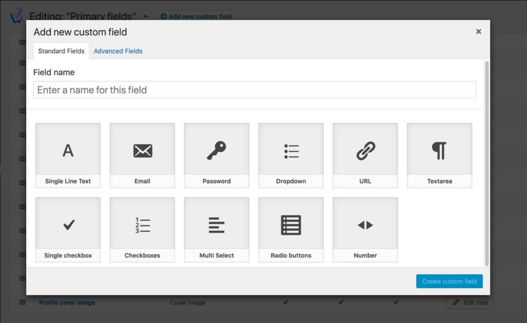 Add new WordPress custom field