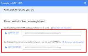 Adding Google Recaptcha - demo website